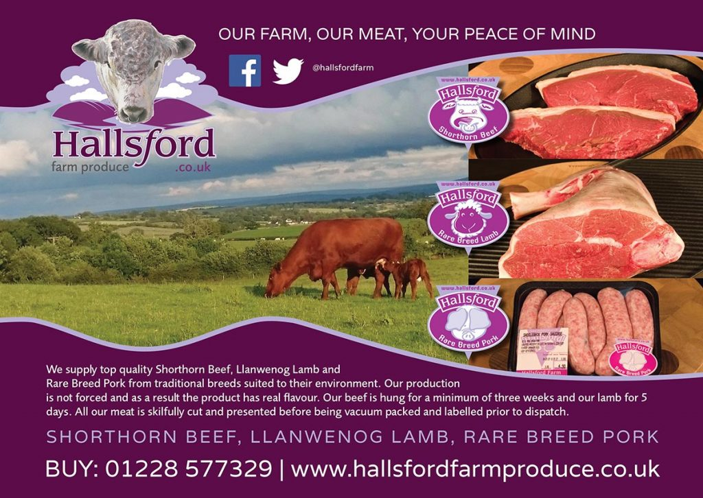 Hallsford Leaflet 2017