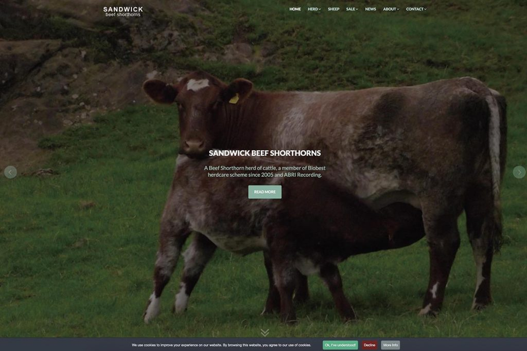 Sandwick Shorthorns